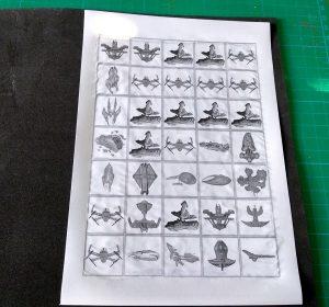 Folio con tokens pegado a goma eva